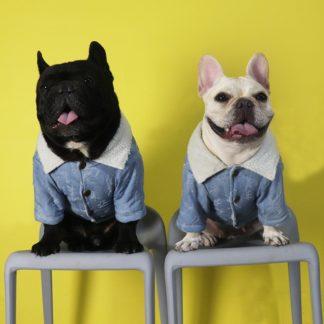 French Bulldog Denim Jacket Ask Frankie